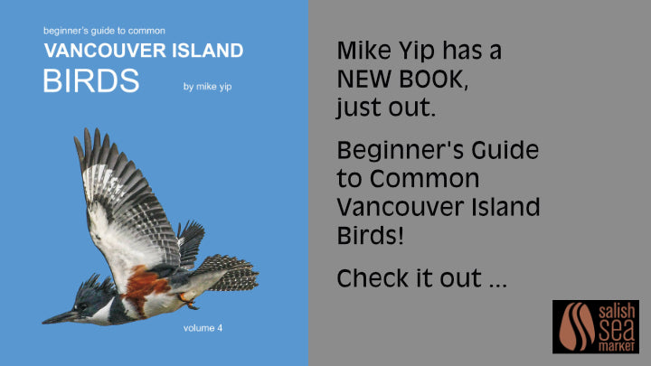 Mike Yip has a new book!