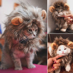 Load image into Gallery viewer, Funny Cute Lion Costume Mane - Wig Cap Hat