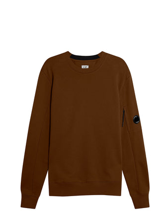 Diagonal Raised Fleece Lens Crew Sweat in Cinnamon