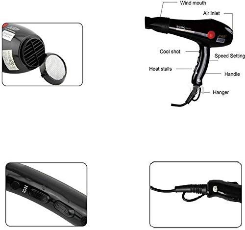 TopMart Professional Hair 2000 Watts  (Black)