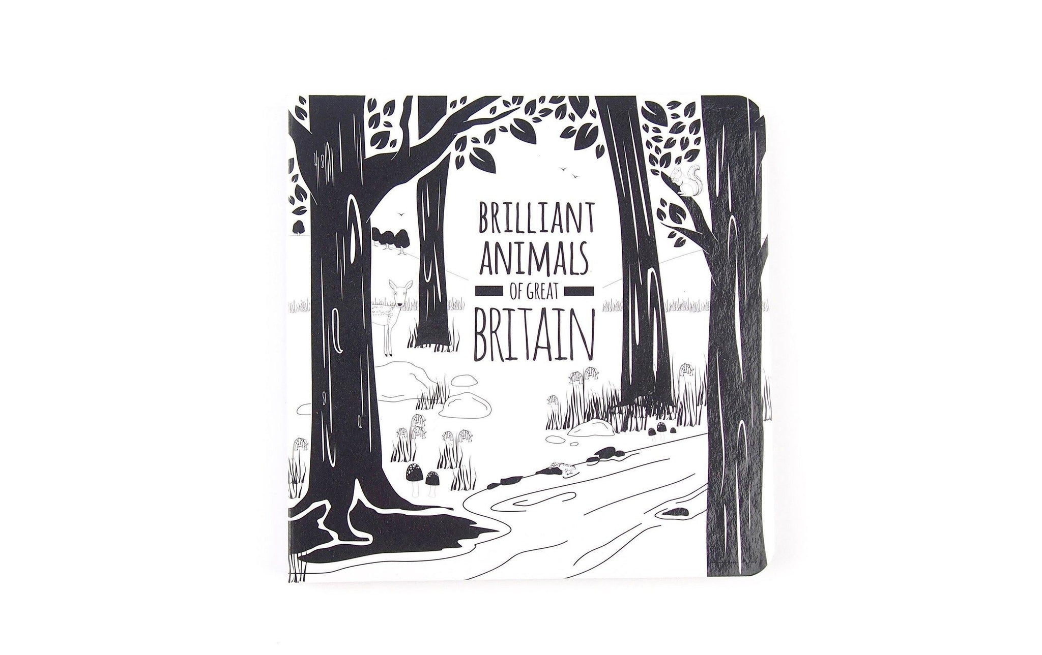 Baby Black and White Book with Animals of Britain
