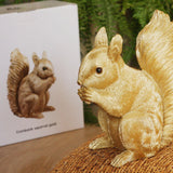 Squirrel Money Box made by Klevering