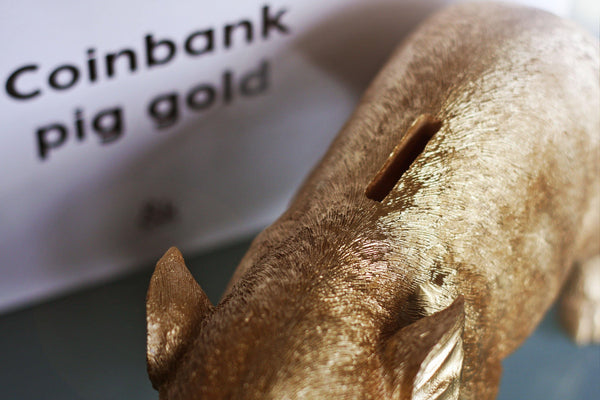 Piggy Bank Money Box Gold made by Klevering