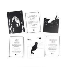 Baby Black and White Flash Cards Underwater Animals