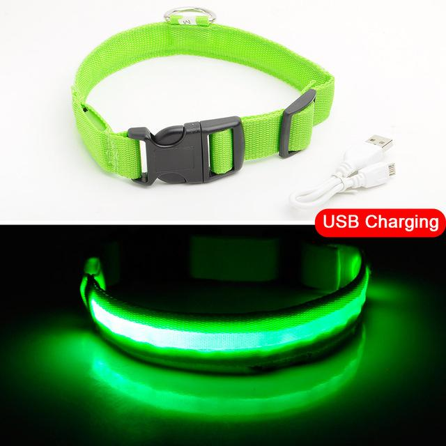 LED collar green, LED collar, USB collar