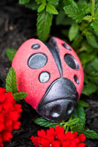 """Good Luck Charm"" Ladybug Bath Bomb *Zero CBD*"