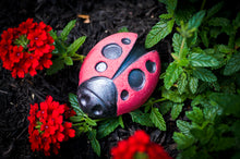 "Load image into Gallery viewer, ""Good Luck Charm"" Ladybug Bath Bomb *Zero CBD*"