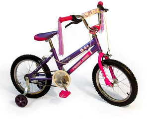 "Peerless Girls 16"" Bike with Training Wheels - Purple and Pink"