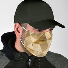 Load image into Gallery viewer, Golden Chimera Face Mask