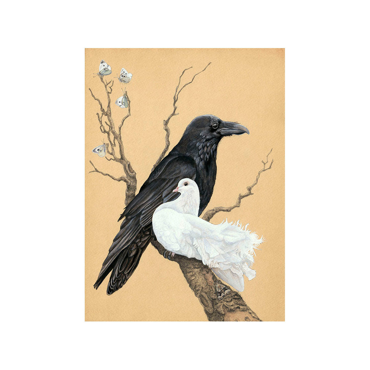 Raven and Dove Greeting Card