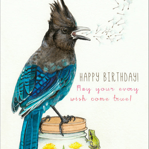 Birthday Steller's Jay Card