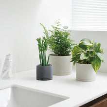 Load image into Gallery viewer, Plant Pot in Earth Grey-Plant Pot-KINTO-Animo Store