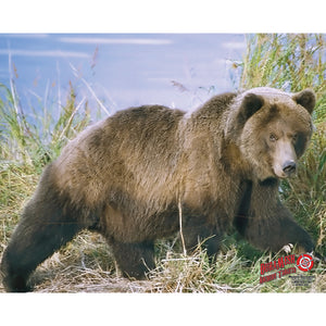 Duramesh Archery Target Grizzly Bear 25 In. X 32 In.