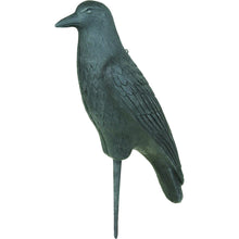 Load image into Gallery viewer, Flambeau Crow Decoy 12 Pk.