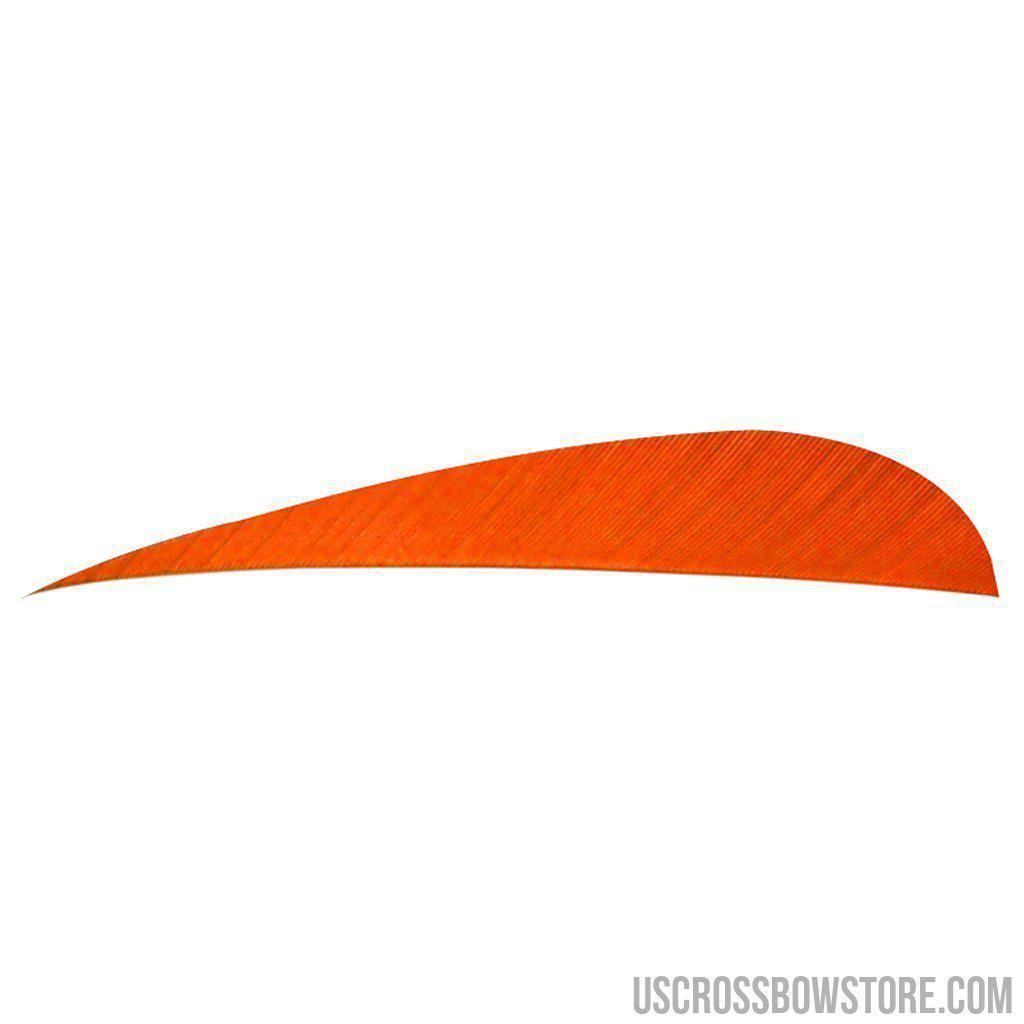 Trueflight Parabolic Feathers Orange 4 In. Lw 100 Pk.-Trueflight-US Crossbow & Archery Store