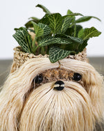 Load image into Gallery viewer, Puppy Planter