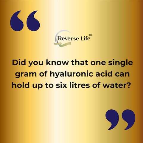 ReverseLife_BlogImage_HyaluronicAcidBenefits