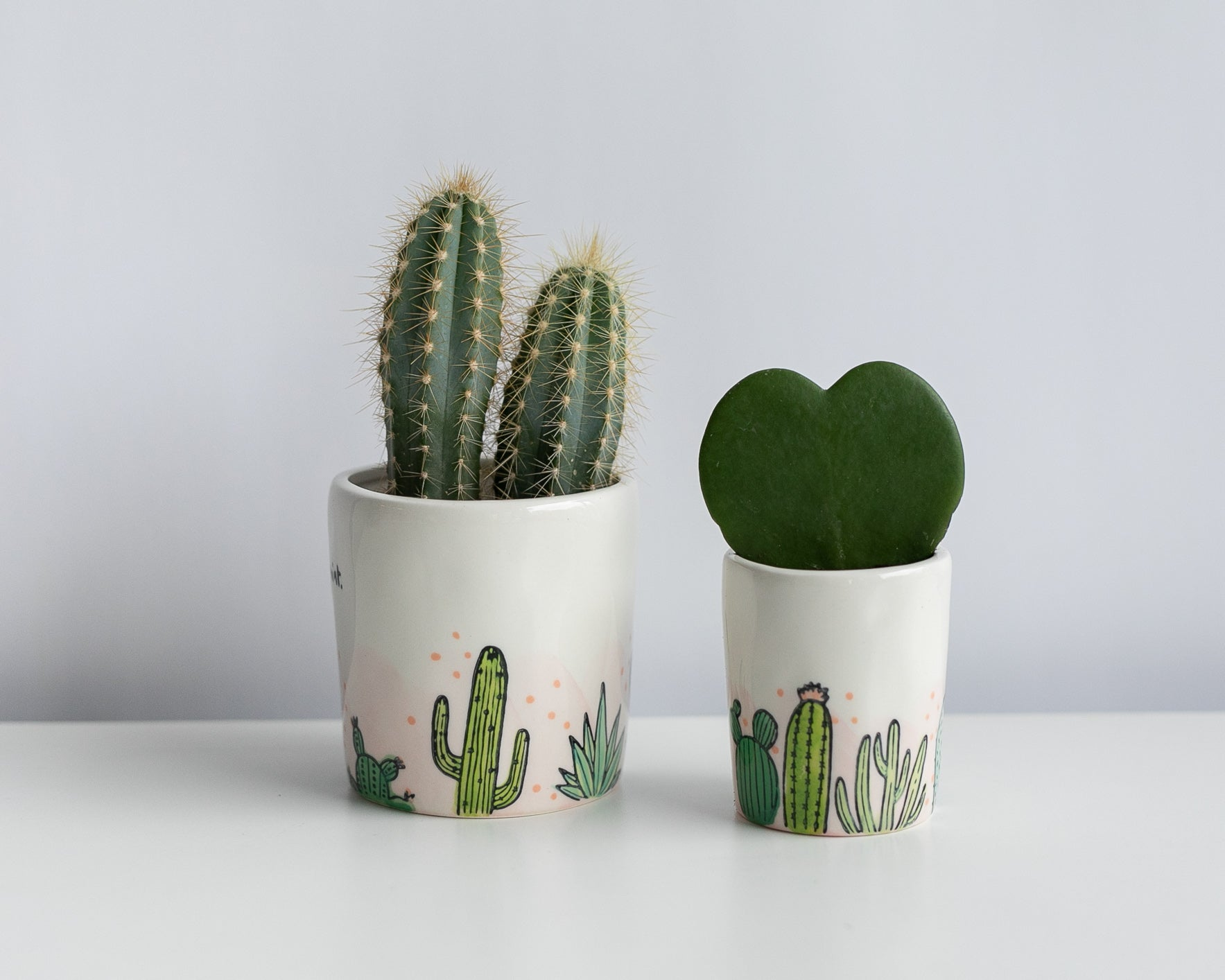 Cacti and Heart perfect pairing- set of two