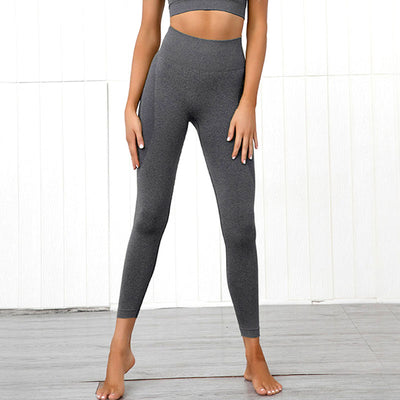 Streamline - Seamless Booty Leggings