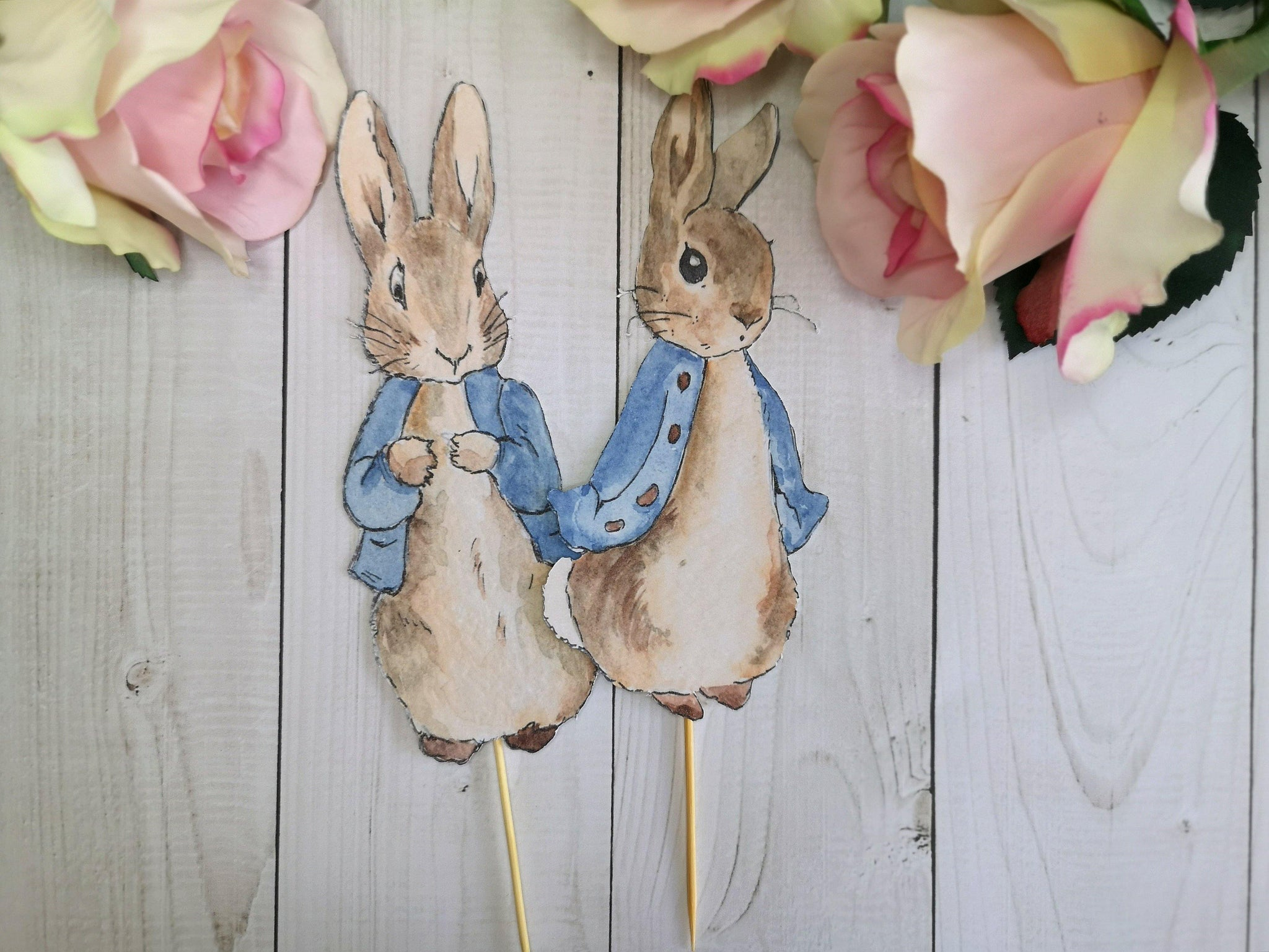2 Large Peter Rabbit Cake Toppers - Blossom Tree Party