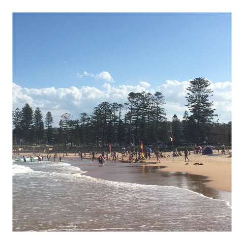 Dee Why Beach Australia