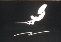 Wakeboarding Decals