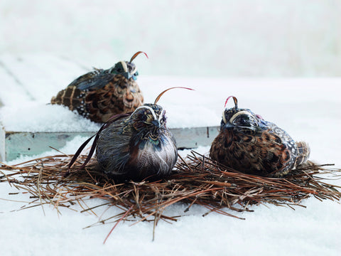 Roost Feather Quail Ornaments S/3