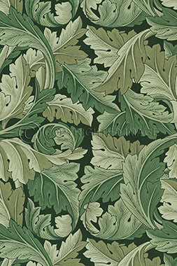 Vinyl Floorcloth - Sage Green Acanthus