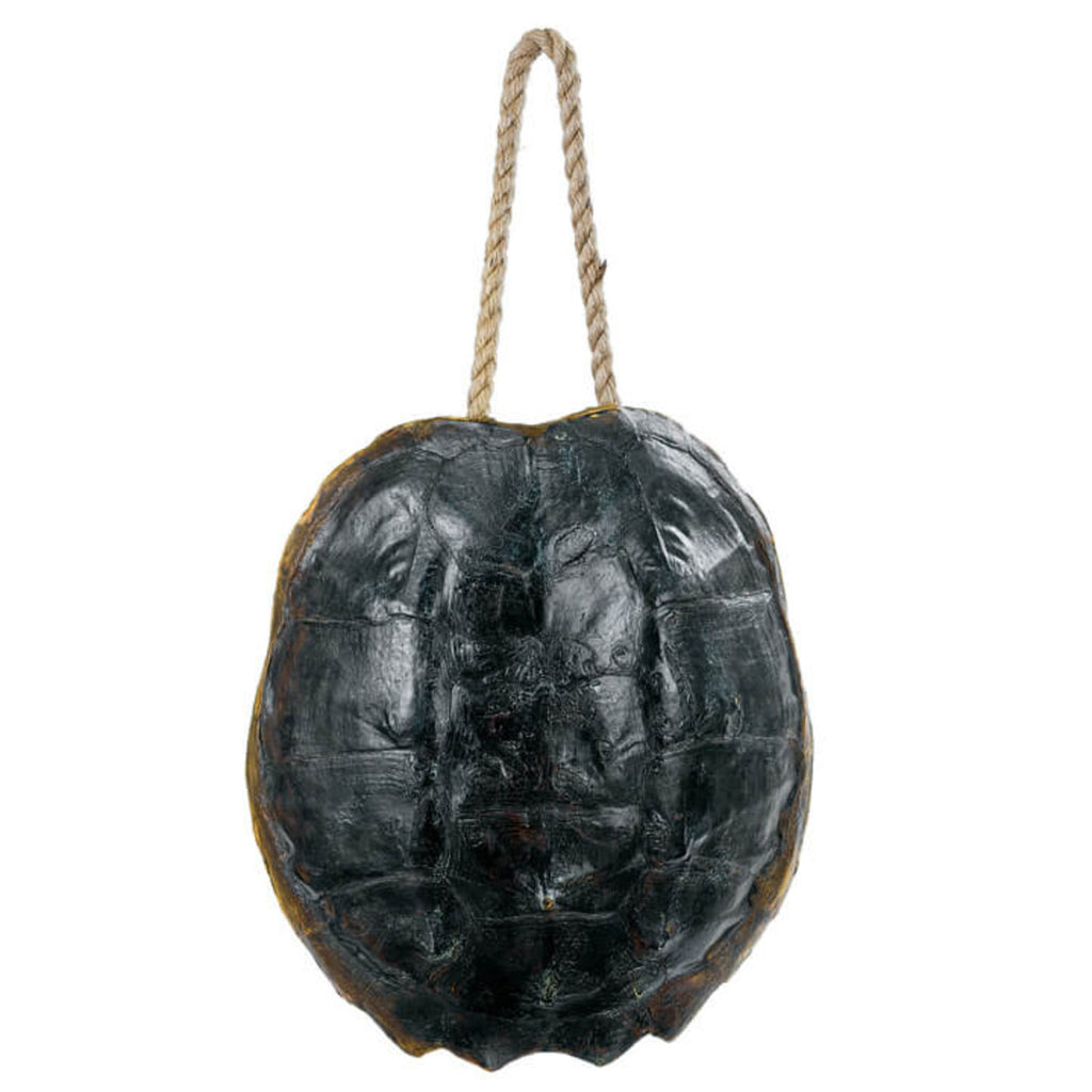 Regina Andrew Design Turtle Shell Accessory