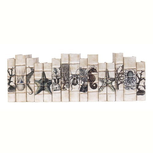 Coastal Curiosities Decorative Books