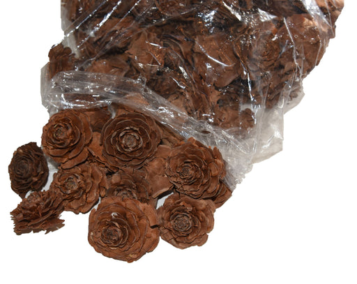 Rose Pinecones | Seasonal Decor | Trovati Studio