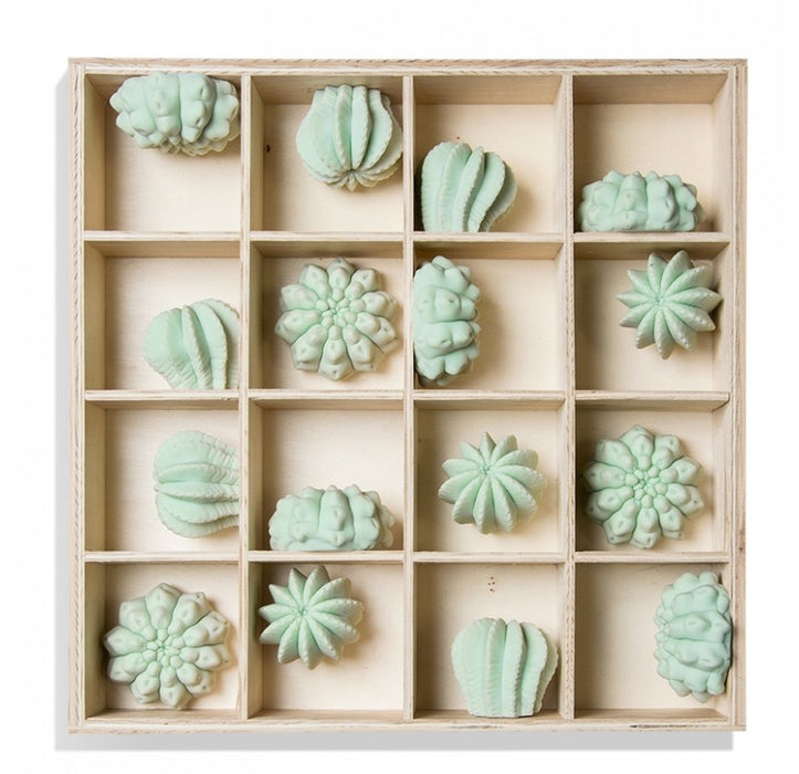 Gold Leaf Design Group Shadow Box with Cactus Wall Play - Trovati