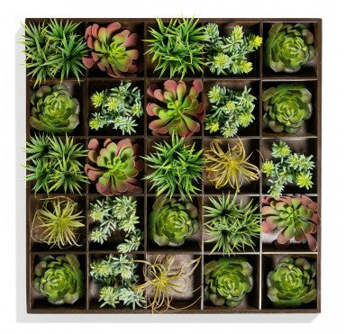 Gold Leaf Design Green Wall with Pixelated Succulents - Trovati