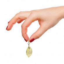 Load image into Gallery viewer, Mini Real Leaf Earrings - Gold - UrbanroseNYC
