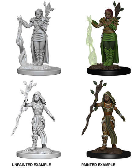 D&D: Nolzur's Marvelous Miniatures - Human Female Druid