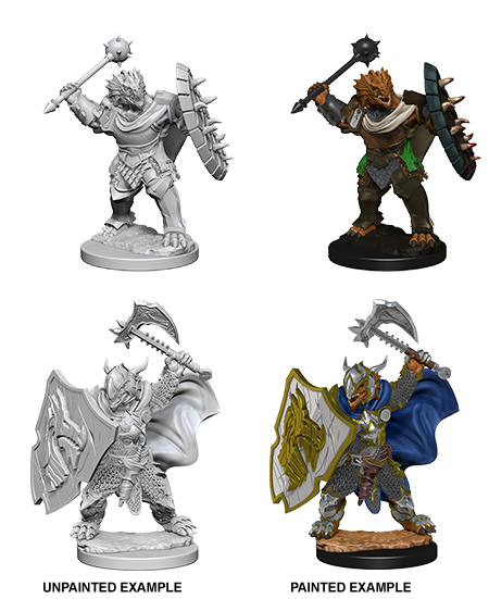D&D: Nolzur's Marvelous Miniatures - Dragonborn Male Paladin