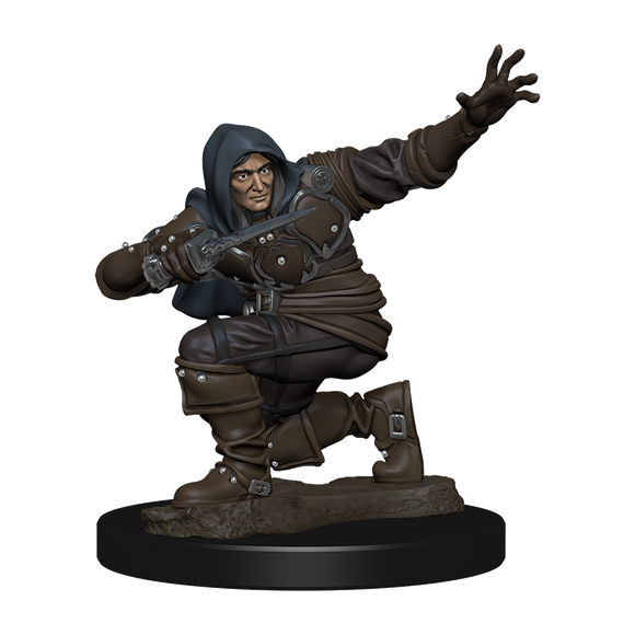 Pathfinder Battles: Human Rogue Male