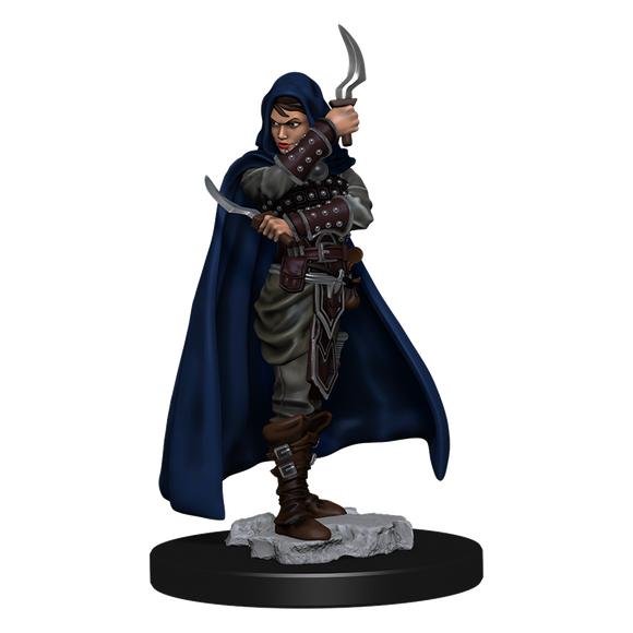 Pathfinder Battles: Human Rogue Female