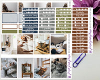 Cozy Cats at Home Photo Kit for Planner or Bullet Journal, Functional Stickers