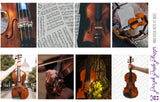 Violin Weekly Photo Kit for Planner or Bullet Journal, Functional Stickers