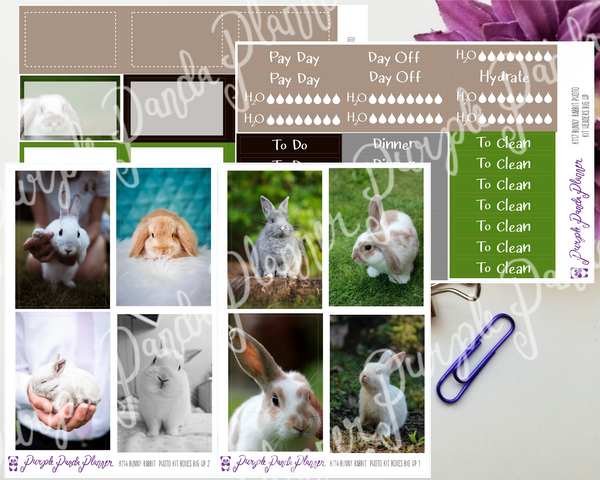HP Big -Bunny Rabbit Photo Kit for Planner or Bullet Journal, Functional Stickers (K114)