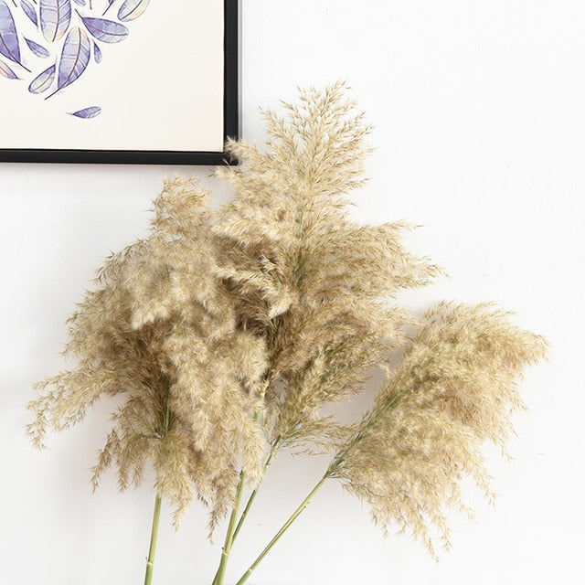 20 pcs Pampas Grass Decor Plant