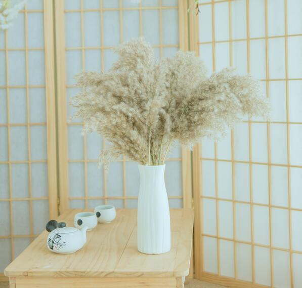 10 pcs Dried Pampas Grass Decor Plant