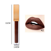 Rose Gold Lid Square Tube Lipsticks - showemakeup