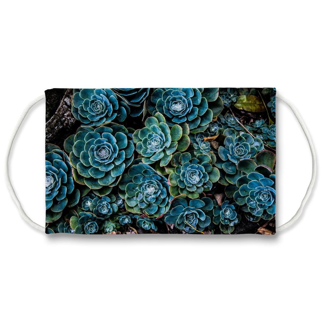 Blue Cactus Face Mask. Reusable. PM2.5 Activated Carbon Filter.