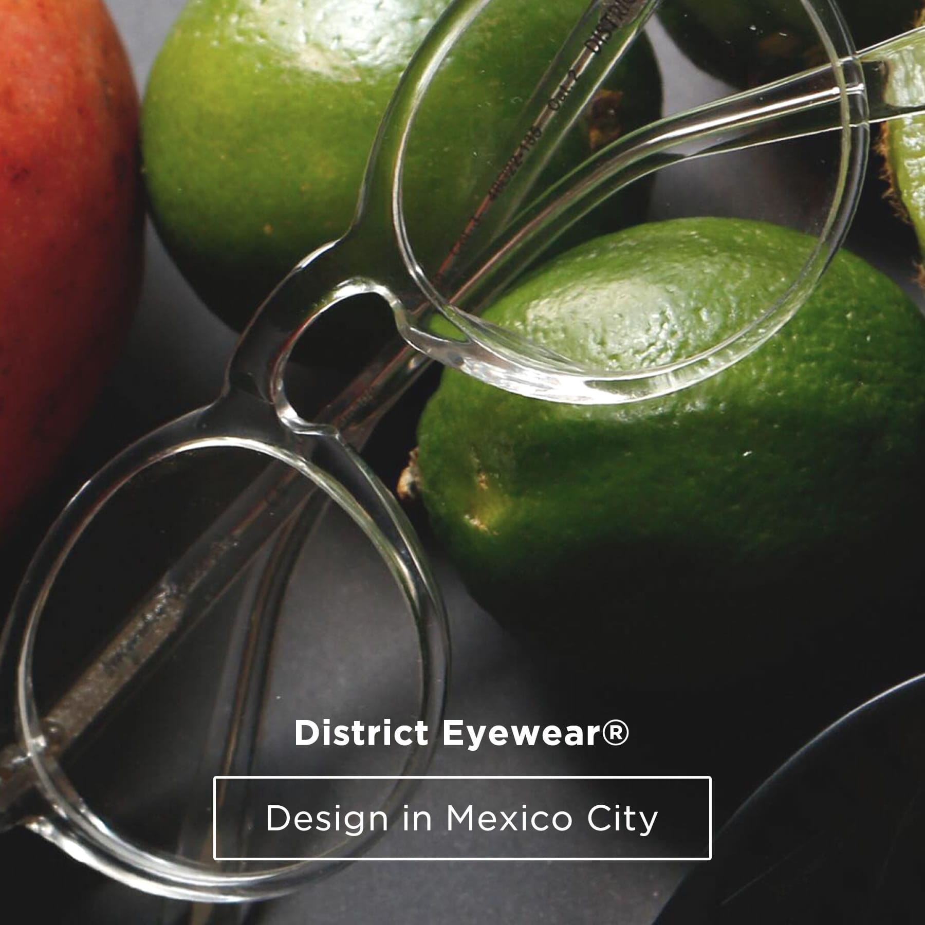 Armzones de Lentes District Eyewear graduables