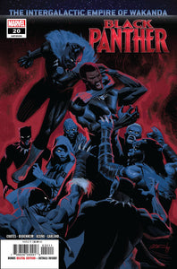 BLACK PANTHER Comic #20