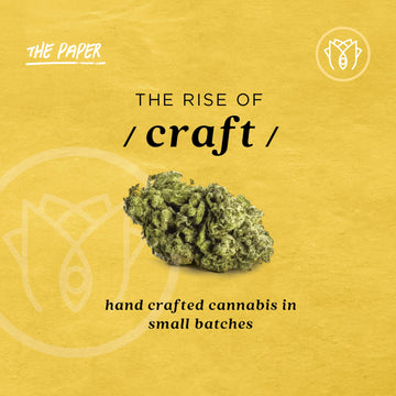 The Rise Of Craft Cannabis
