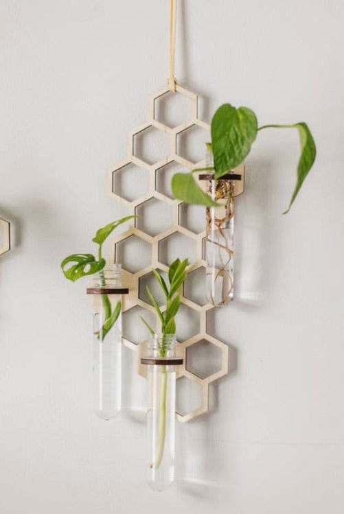 Large Honeycomb Propagation Station