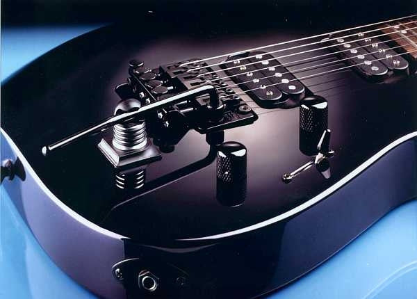 Schaller® Tremstop - converts tremolo to fixed bridge by locking the arm - black
